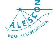 Alescon wil graag meer dakgoten schoonmaken na geslaagde klus bij Actium
