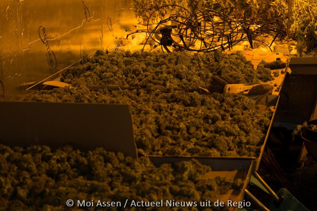 Duitsers maken twaalf kilo hennep buit bij ripdeal in de wijk Peelo in Assen