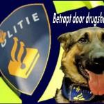 Betrapt door drugshond