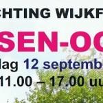 Wijkfeest in Assen-Oost 2015