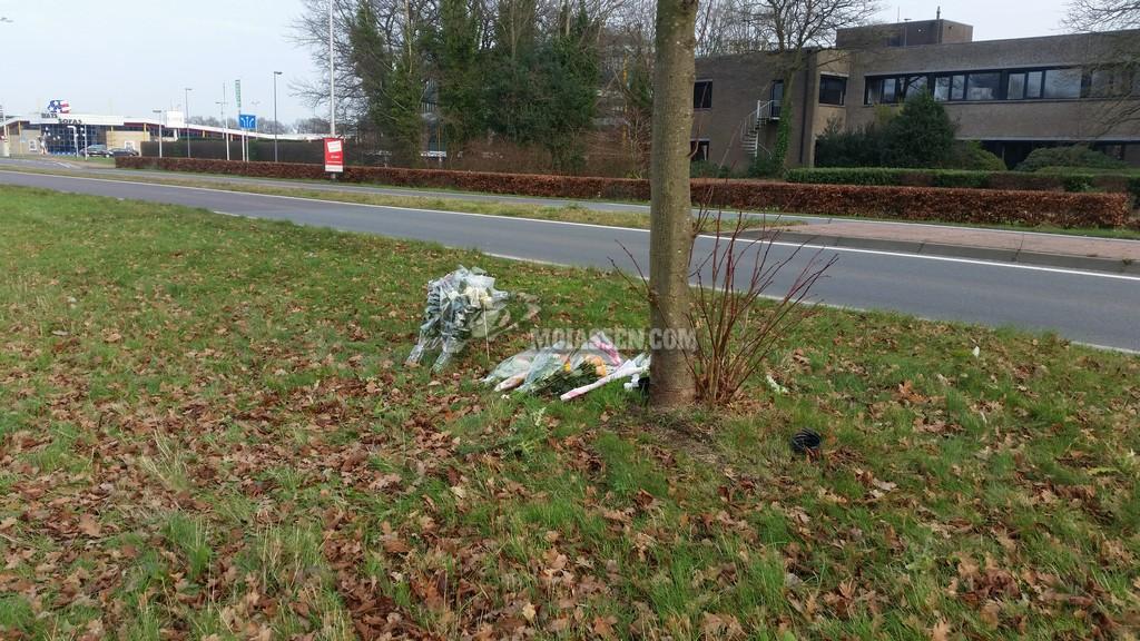 Vincent van Gogh herdenkt omgekomen leerling uit Assen