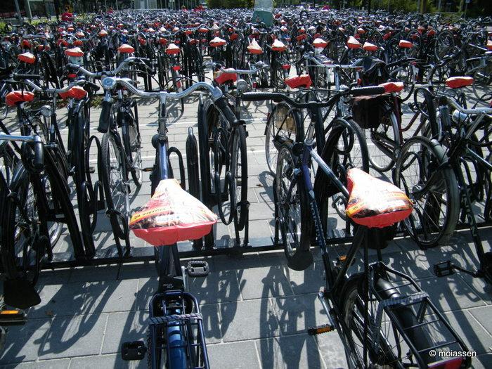 Fietsersbond Assen klaagt over de fietsenstalling bij het tijdelijke station van Assen