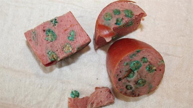 Dierenkliniek Assen waarschuwt voor vergiftigd voedsel op straat in Assen