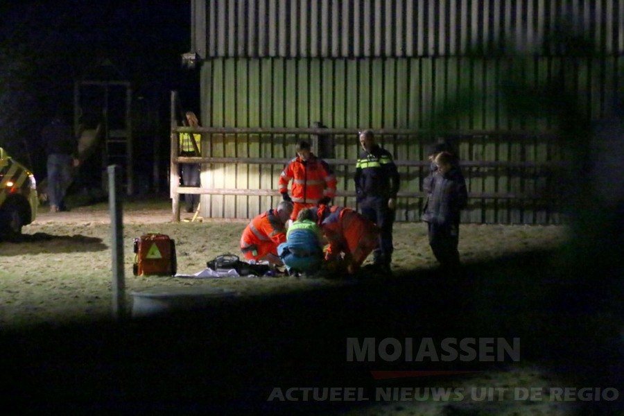 Ruiter uit Groningen krijgt trap van paard en raakt zwaar gewond