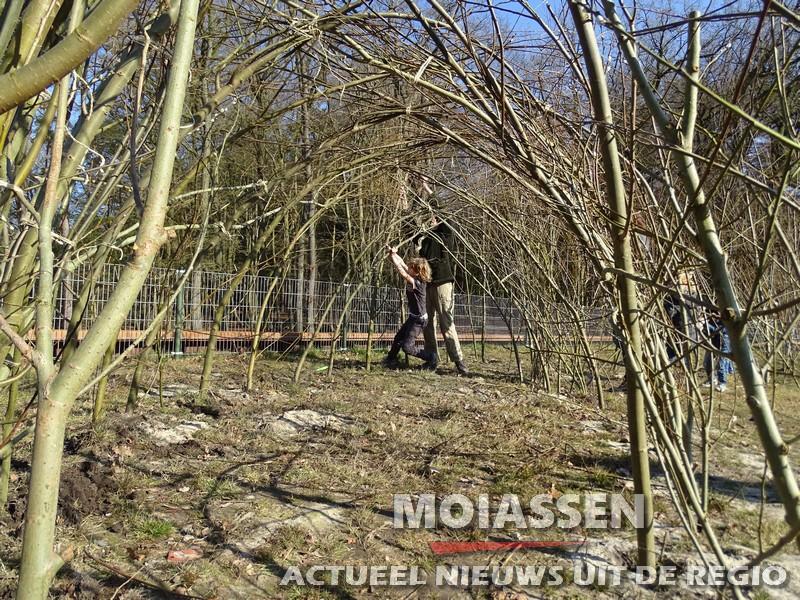 Wilgentunnel bouwen in duurzaamheidscentrum Assen