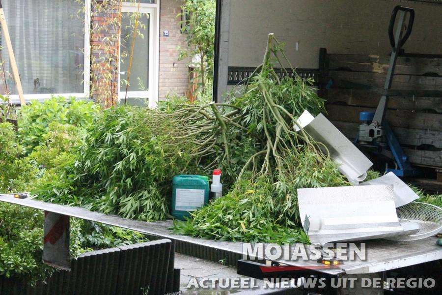 Politie ontmantelt hennepkwekerij in Assen
