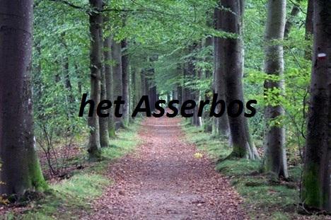Politie is op zoekt getuigen van schennispleging in Asserbos