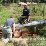 paard uit diep sloot gered bij Anderen