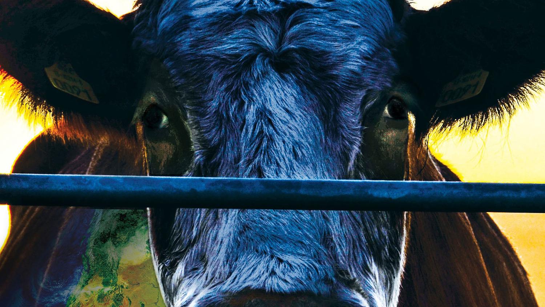 Diner en filmvertoning 'Cowspiracy'
