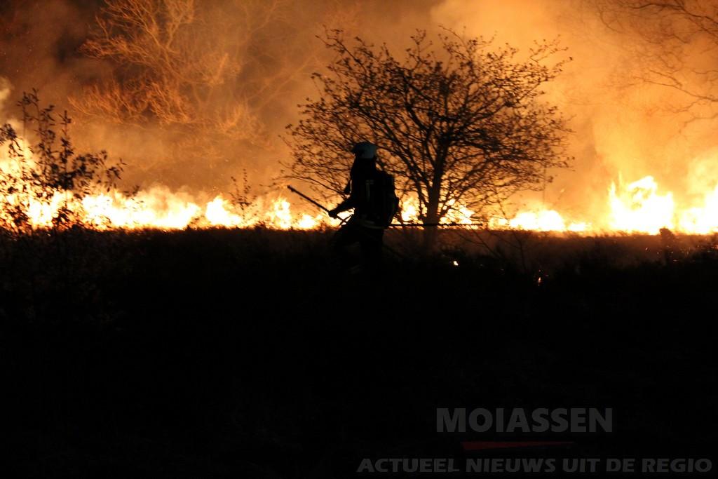 Berm/ruigte brand in Assen