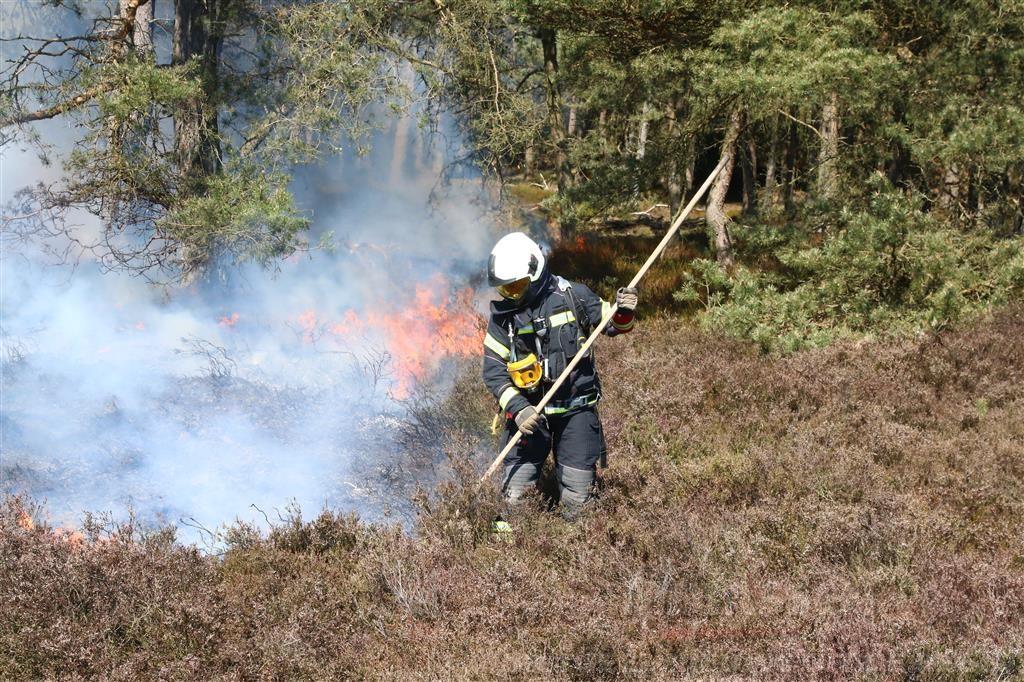 Grote heidebrand bij Gasselte