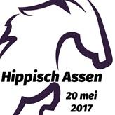 Paardenliefhebbers opgelet: Hippisch Assen 2017
