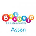 Kinderspeelparadijs Ballorig Assen wordt verbouwd