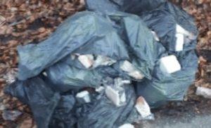 Bouwafval gedumpt in Asserbos Assen