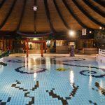 Viespeuk belaagt zwemmende meisje in De Bonte Wever Assen