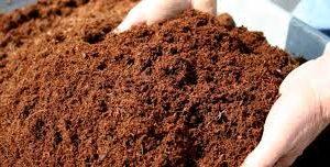 Assen doet ook dit jaar mee aan de landelijke compost dag!