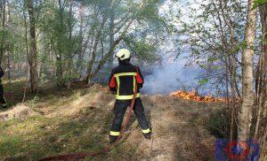 Opnieuw natuurbrand bij voormalig militair oefenterrein in Assen