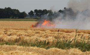 Brand op graanakker Gasselternijveen