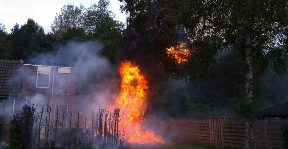 Coniferen in brand aan het Leemveld in Assen