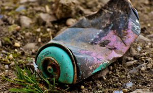 Hou het Asserbos al wandelend schoon