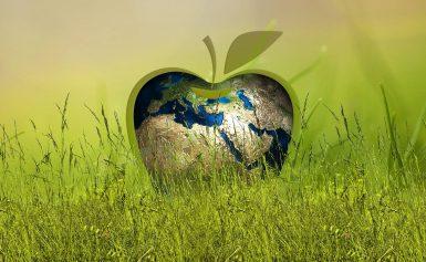 Maatschappelijke ambities DNK gebaseerd op Global Goods