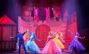Doornroosje De Musical in Theater DNK