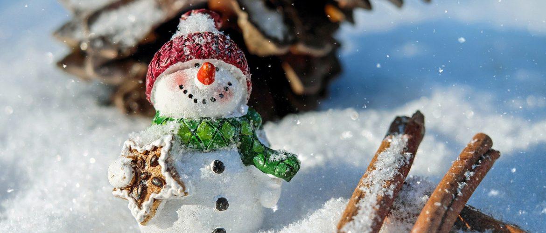 Overdekte kerstmarkt in De Schulp