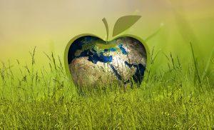 Ruim dertig bedrijven uit Assen aan de slag met de Milieubarometer