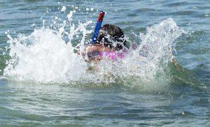 Waarschuwing voor blauwalgen zwemplas Hunzedal