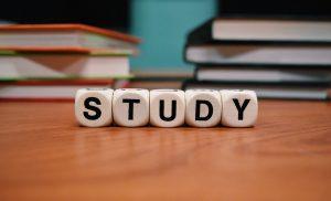 Online Studiekeuzeweek Terra MBO